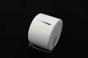 MCAP EVO Silver Gold Oil / EVO 金銀箔油浸電容 100uf/350V